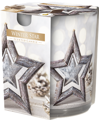 winter star bispol